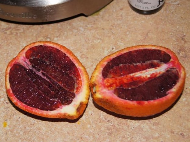 2 blood orange – cropped