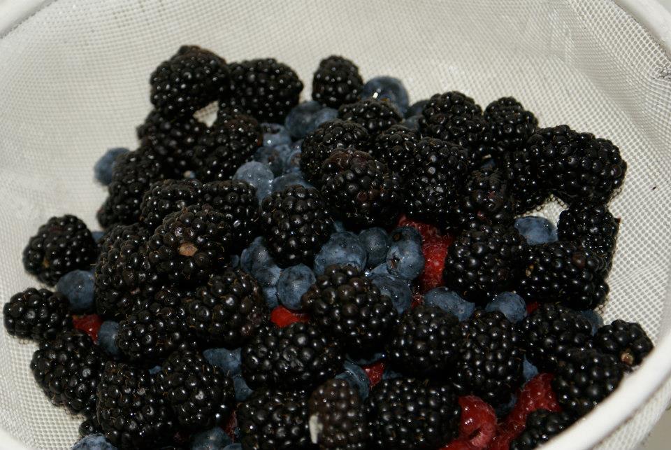 31 blackberries blue berrys raspberries