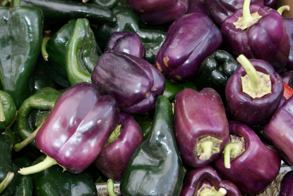 5 purple bell peppers