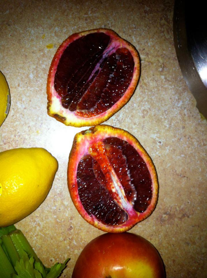 Erection Foods (5)