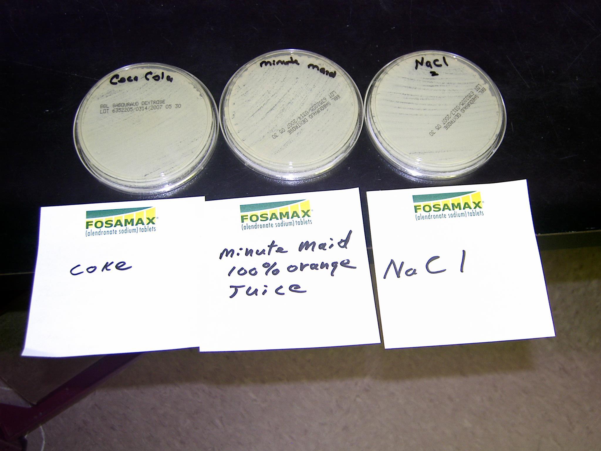 Petri – Coke vs Orange Juice vs Sodium Chloride