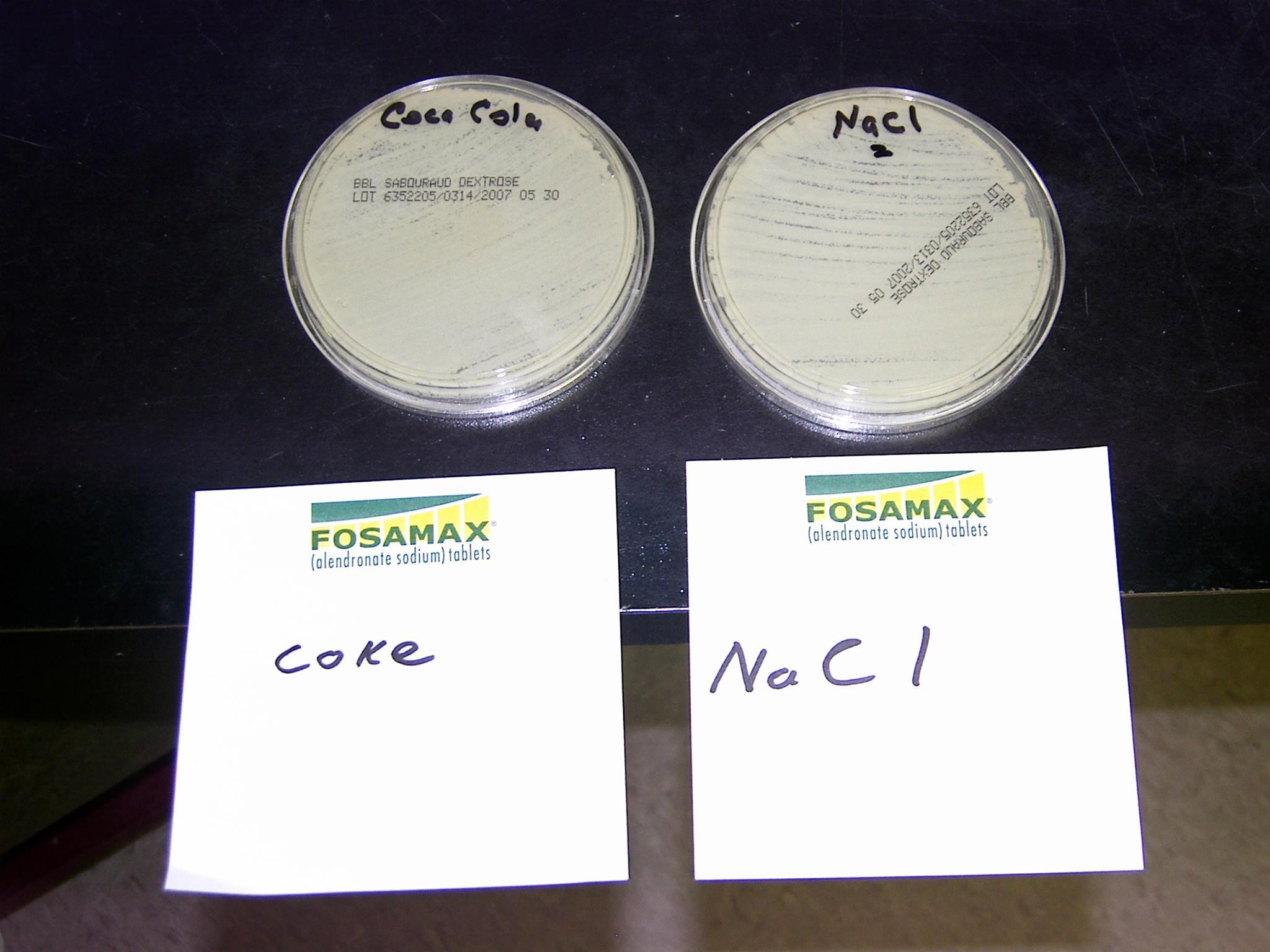 Petri – Coke vs. Sodium Chloride