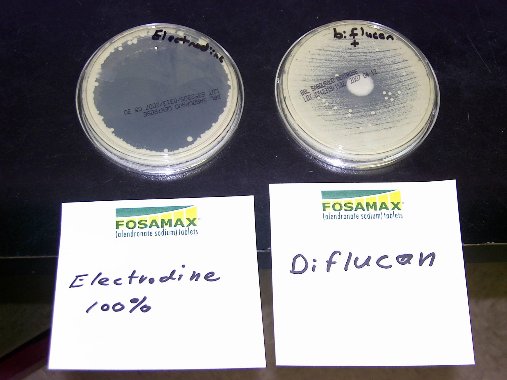 Petri – Electrodine vs Diflucan
