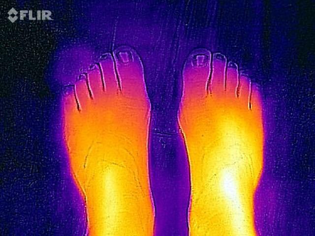 FLIR Infared Camera (feet)